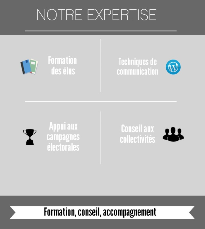 infographie_expertise